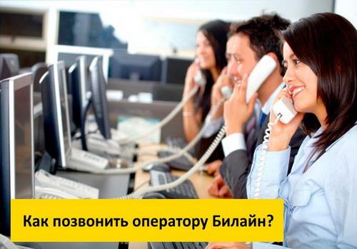Как позвонить оператору Билайн - все способы дозвона