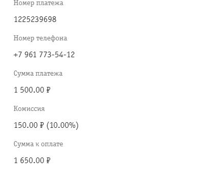 Пример отчета платежа на банковскую карту